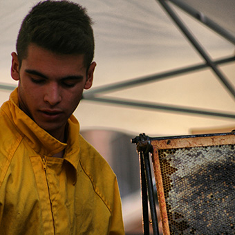 Jóven apicultor ayorino