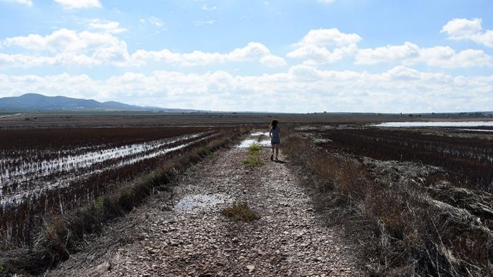 laguna, san benito, Ayora, Almansa, camino